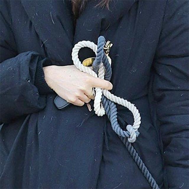 Dog leash detail - Meghan Markle walking her dog Guy in Toronto in December 2016.